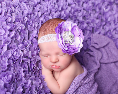 purple flower headband baby prop